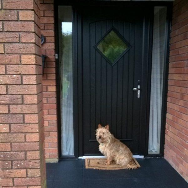 Edinburgh Style Front Door In Bog Oak